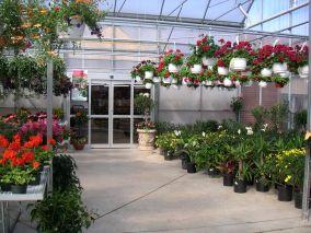 Aménagement commercial BOTANIX Centres Jardins